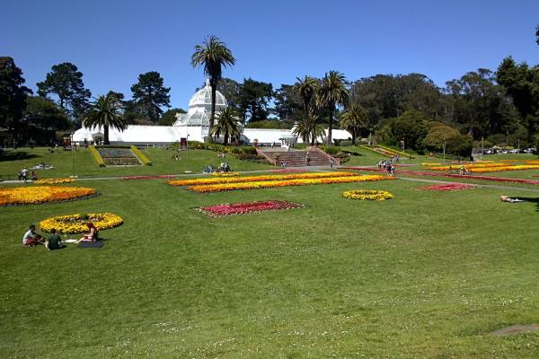 San Francisco's Conservatory of Flowers on a warm, sunny day in Golden Gate Park. Image was taken with Google Glass.