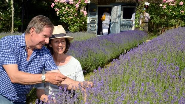 Ian and Suzie Dick on their lavender farm, Lavande de Lherm.