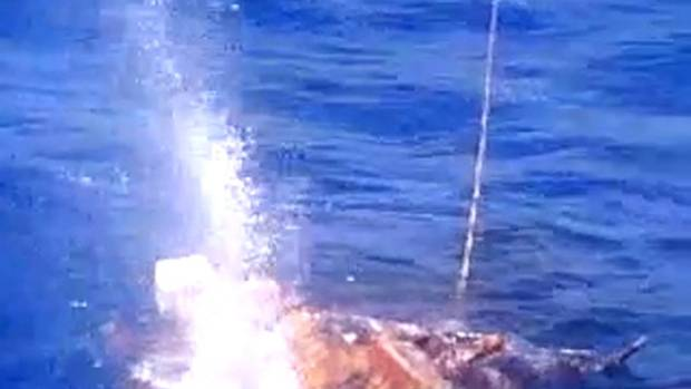 A still from the video shows shots fired at the fishing boat.