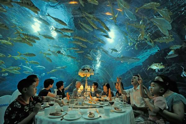 Tourists have dinner as fish swim around them, at the Tianjin Haichang Polar Ocean World in Tianjin, China.