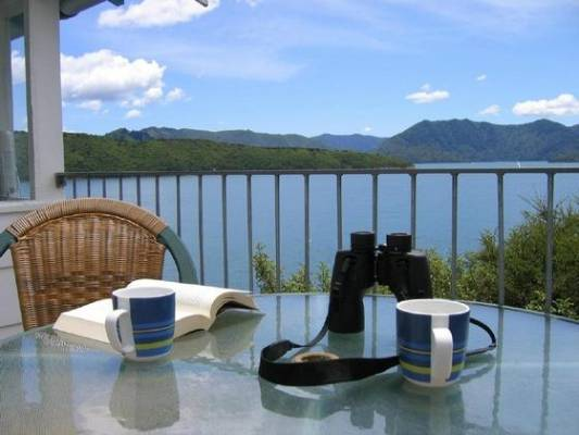 RELAX: With a good book, a cuppa, and some binoculars to spot the wildlife.