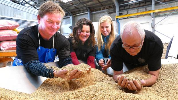 Steve Nally, from left, manager of Invercargill Brewery inspecting malted barley ready for brewing beer with Gladfield ...