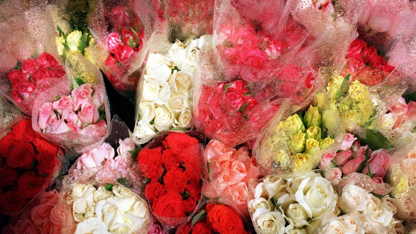 Five of the best florists in auckland stuff izmirmasajfo