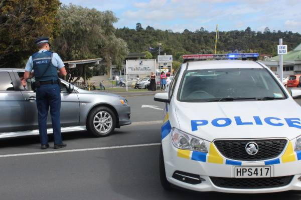 Police at scene outside Albany Primary School.