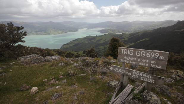IN THE DISTANCE: The view back to Akaroa from the highest point on the Banks Peninsula Track.