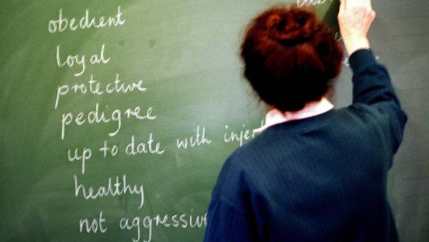 Figures released by the Education Council show that 16 teachers a year, on average, are investigated because of concerns ...