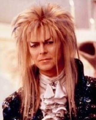 In the 1986 adventure fantasy film Labyrinth as Jareth, the Goblin King.