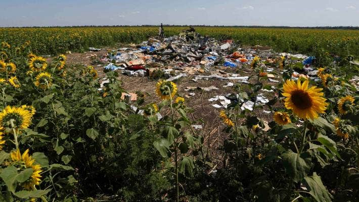 Sunflowers grow around the wreckage and debris at the crash site of Malaysia Airlines Flight MH17 near the village of Hrabove (Grabovo), Donetsk region.