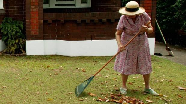 Beware of rakes hidden in fallen leaves.
