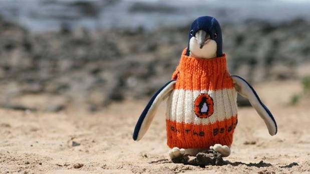 PENGUIN KNITS: This little stuffed-toy penguin reminds us of a super-cute hot water bottle.