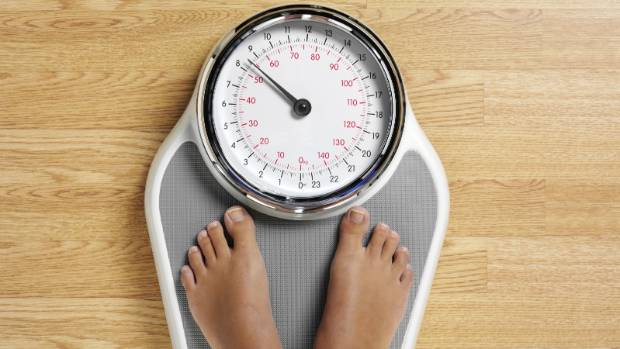 Gut microbes - the key to losing weight? | Stuff co nz