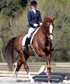 Melissa Galloway aboard 11-year-old gelding Zeilinger at the national dressage championships in Fielding, where she ...