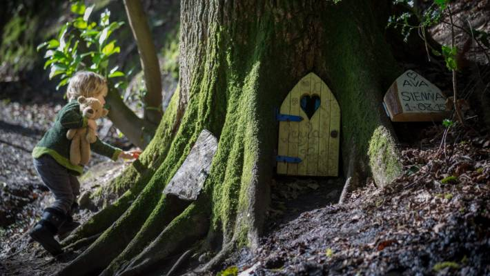 A Small Boy Looks Inside Fairy Door At The Bottom Of Tree In Wayford