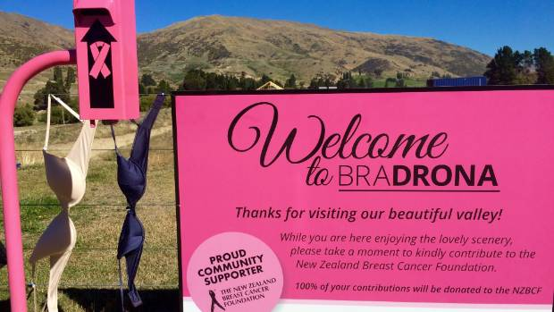FUN FUNDRAISER: A pink sign and collection box to raise money for breast cancer have been put up beside the bra fence.