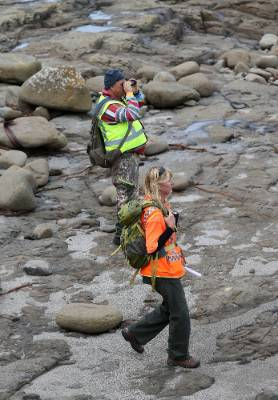 Craig Leith, of Tokanui, left, and team leader Lianne Latta, of the Catlins, search along the coastline about 2 ...