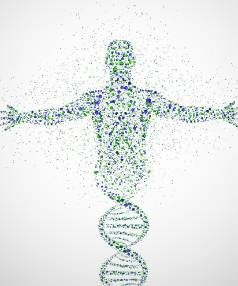The DNA double helix, one of the building blocks that makes up life.