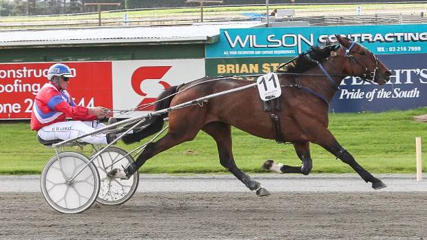 Mass Invasion provides Clark Barron with his 1000th driving success at Sunday's Invercargill Harness Racing Club meeting.