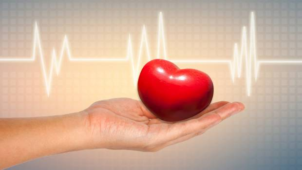 Organ donors can save lives - in fact, about 400 Kiwis a year benefit from it.