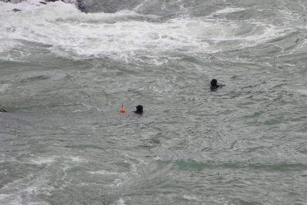 Divers enter the water to attach a rope to the car wreck in Blue Cod Bay.