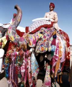 A mahout sits on a decorated elephant during an elephant festival in Jaipur.
