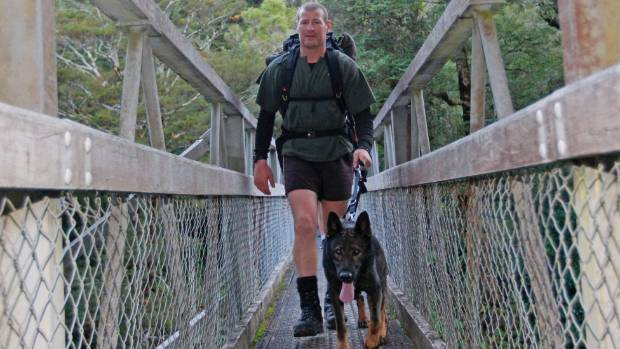 Constable Mike Wakefield walks out of Mt Holdsworth bush with his police dog Thames.