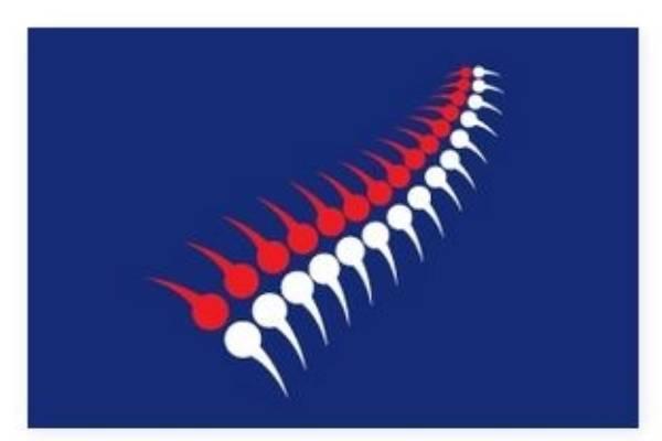 "Kiwiana, by Kim Crosland of Auckland: ""Kiwis in the shape of the fern."""