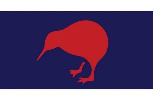 Lone Kiwi by Duncan Design of Waikato
