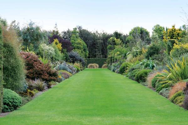 How to create a classic english garden using nz natives for New zealand garden designs ideas