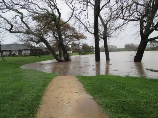 """""""The stream has only a few more metres to go before it's literally in the backyards of several houses which back onto ..."""