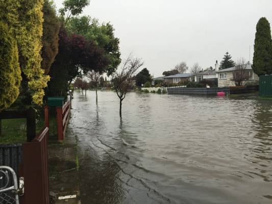 """Highbury, Palmerston North. """"This is from the same drain that has been blocked since I moved in here over 2 years ago ..."""