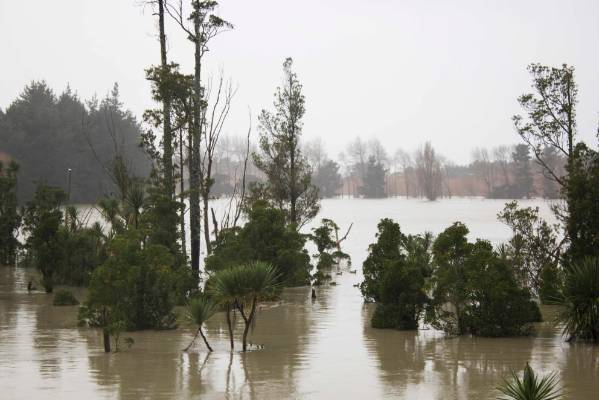 Flooding in Manawatu farmland, around 8.30 on Sunday morning.