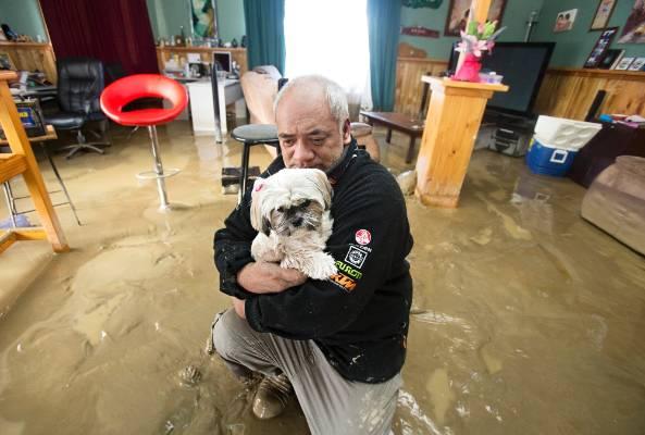 James Takarangi in his flooded house in Waitotara with his dog.