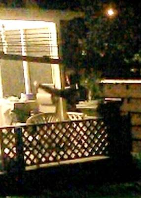 An intruder is caught sneaking around Melissa Rodrigues' Waikanae property. The image comes from a smartphone app that ...