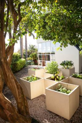 Small Auckland garden designed as rooms to solve space issue