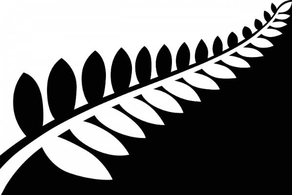 Alofi Kanter's black and white fern design was announced as the first finalist.