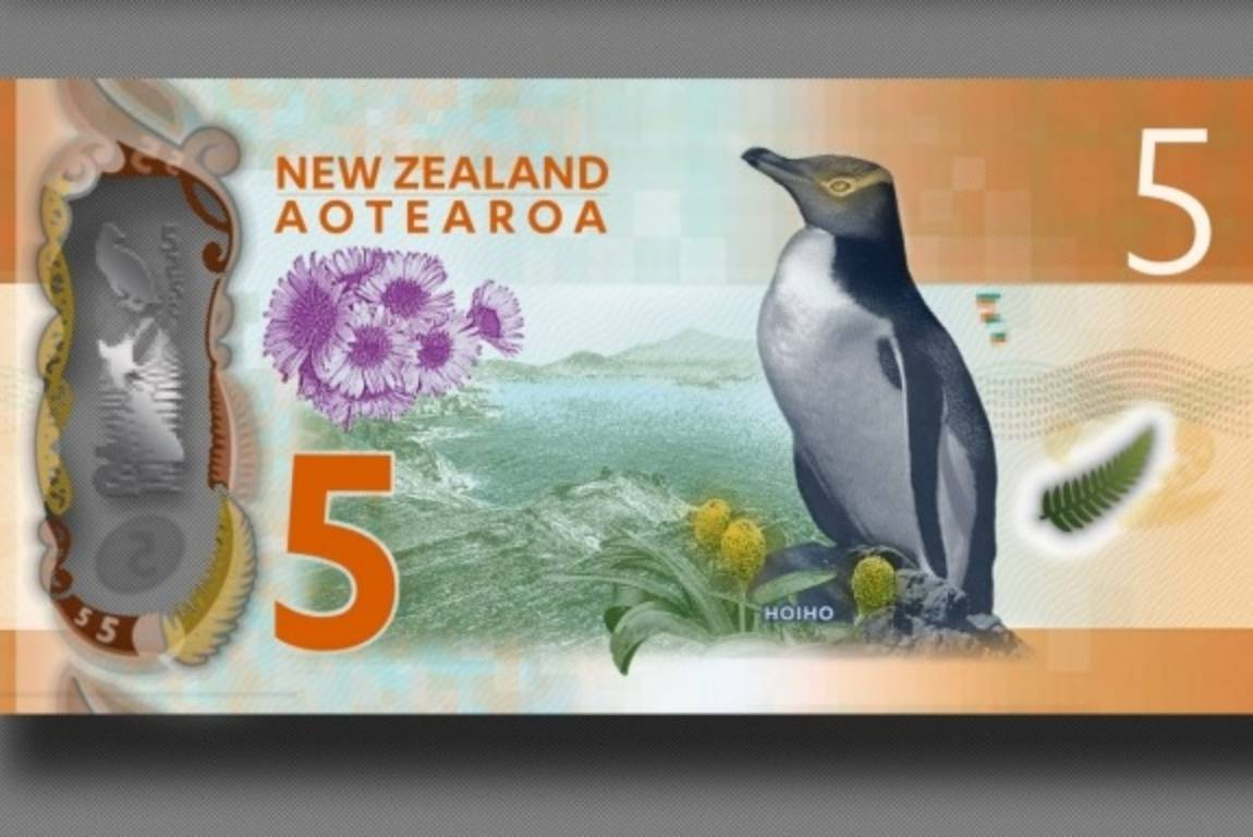 4b5dd3cd9 New Zealand's $5 note in the running for greatest in the world | Stuff.co.nz