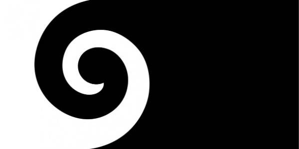 Andrew Fyfe's koru flag was the third to be announced.