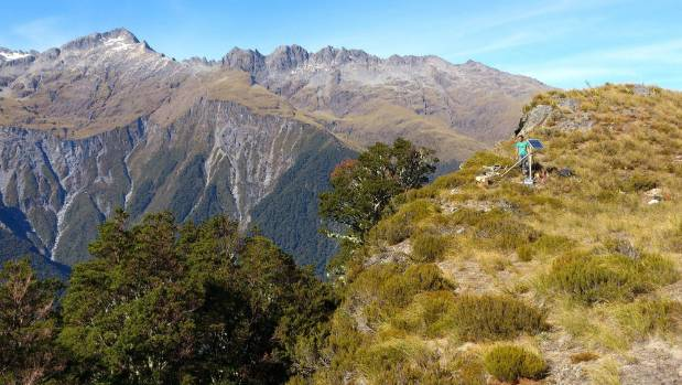 Victoria University researchers studying the Alpine Fault have said it is not the vertical crack it was presumed to be, ...