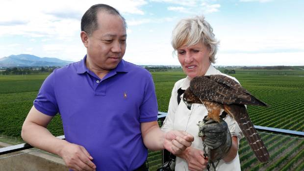 Ningxia delegation leader Kailong Cao visited Brancott Estate, near Blenheim, in March and met Diana Dobson of the ...