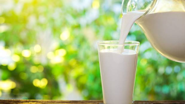 Milk production is expected to weaken throughout the season, putting more upward pressure on dairy prices.