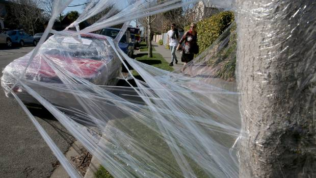 Saran Wrap Car: Car Wars: Plastic Wrap Prank Was Payback For Post-it Notes