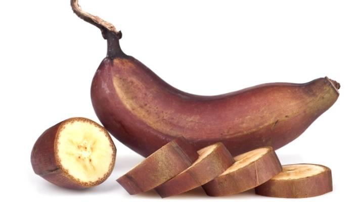 Addicted to gigantic banana