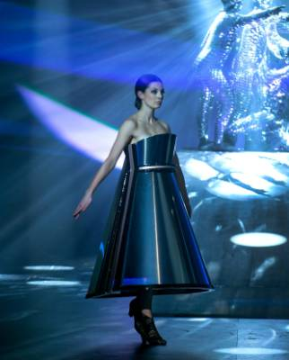 The Art Deco-inspired Diva's Dreamscape won Nelson designer Peter Wakeman's World of WearableArt's supreme award. The ...