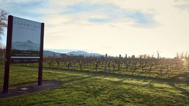 Cloudy Bay Winery in Marlborough.