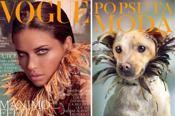 Is it just us or did they put bronzer on the dog, too?