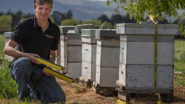 Christian Walsh, chief executive of Hivemind, installs some of the company's remote hive monitoring gear