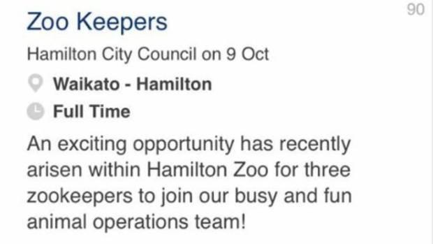 Seek co nz jobs wellington