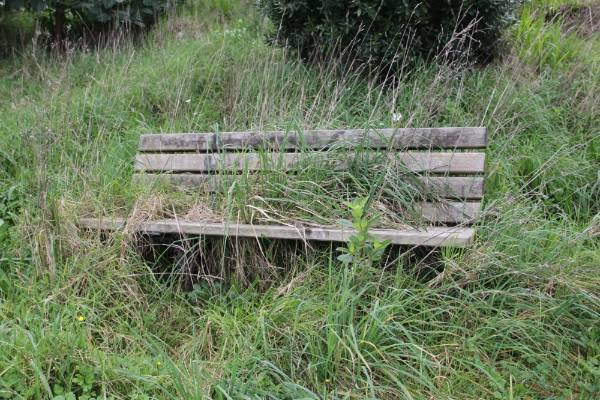 A seat, once well used, is now overgrown.