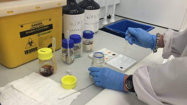 lab tests auckland christmas hours 2016