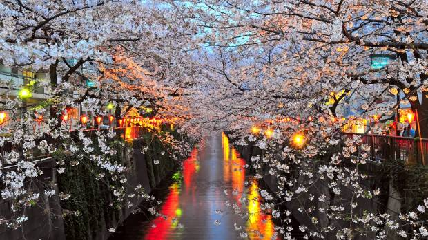 Lonely Planet S Japan The 10 Highlights Of A World Apart Stuff Co Nz